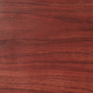 L05 ascel for Formica madera
